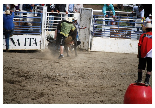 rodeo clown helping rider
