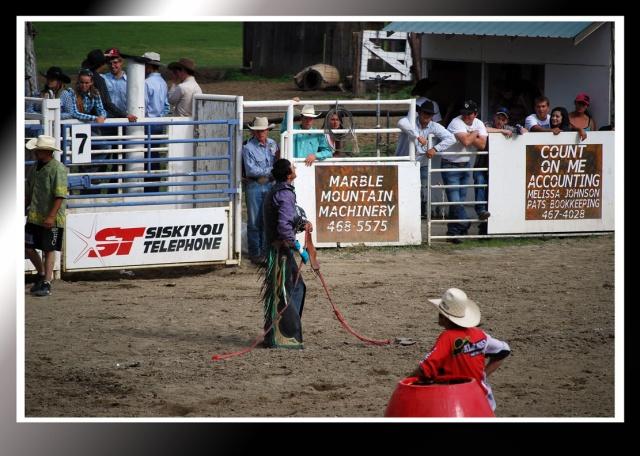 Grateful Bull Rider